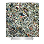 Colorful Abstract Shapes 2 Shower Curtain