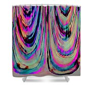 Colorful Abstract W Shower Curtain