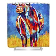 Colorful Angus Cow Shower Curtain