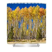 Colorful Aspen Panorama Shower Curtain