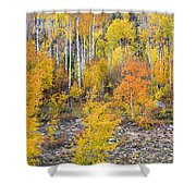 Colorful Autumn Forest In The Canyon Of Cottonwood Pass Shower Curtain