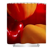 Colorful Bells Shower Curtain
