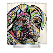 Colorful Boxer Shower Curtain