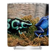 Colorful But Deadly Poison Dart Frogs Shower Curtain