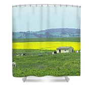 Colorful Canola Field Shower Curtain
