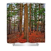 Colorful Carolina Forest Shower Curtain