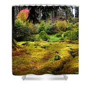 Colorful Carpet Of Moss In Benmore Botanical Garden Shower Curtain
