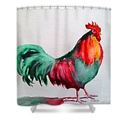 Colorful Chicken Shower Curtain