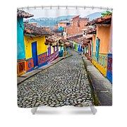 Colorful Cobblestone Street Shower Curtain