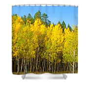 Colorful Colorado 2 Shower Curtain