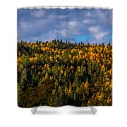 Colorful Colorado 2014 Shower Curtain