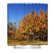 Colorful Colorado Shower Curtain