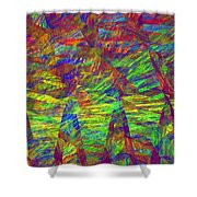 Colorful Computer Generated Abstract Fractal Flame Shower Curtain