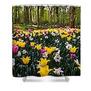 Colorful Corner Of The Keukenhof Garden 1. Tulips Display. Netherlands Shower Curtain