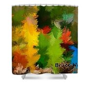 Colorful Feathers Shower Curtain
