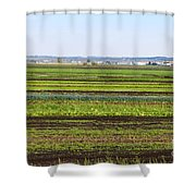 Colorful Fields Shower Curtain