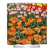 Colorful Flower Bed Shower Curtain