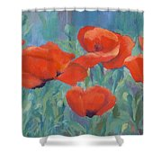 Colorful Flowers Red Poppies Beautiful Floral Art Shower Curtain