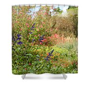 Colorful Garden In Spring Shower Curtain