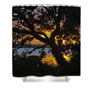 Colorful Glow Shower Curtain