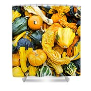 Colorful Gourds  Shower Curtain