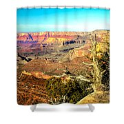 Colorful Grand Canyon Shower Curtain