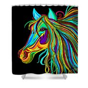 Colorful Horse Head 2 Shower Curtain
