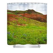 Colorful Iceland Landscape With Green Orange Brown Tones Shower Curtain