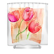 Colorful Illustration Of Red Tulips Flowers  Shower Curtain