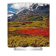 Colorful Land - Alaska Shower Curtain