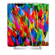 Colorful Leafs Shower Curtain