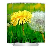 Colorful Macro Shower Curtain