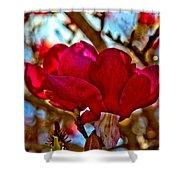 Colorful Magnolia Blossom Shower Curtain