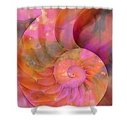 Colorful Nautilus Shell By Sharon Cummings Shower Curtain