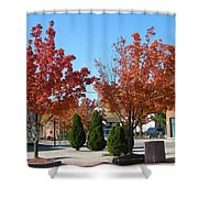 Colorful Ohio Trees Shower Curtain