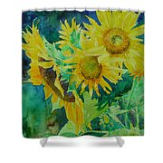 Colorful Original Sunflowers Flower Garden Art Artist K. Joann Russell Shower Curtain