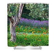 Colorful Park With Flowers Shower Curtain