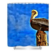 Colorful Pelican Shower Curtain