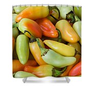 Colorful Peppers Shower Curtain by James BO  Insogna