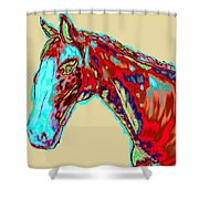 Colorful Race Horse Shower Curtain
