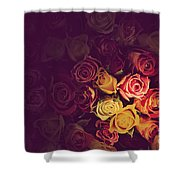 Colorful Roses Background Shower Curtain