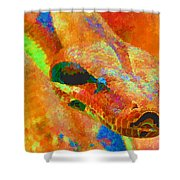 Colorful Snake Shower Curtain