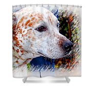 Colorful Spots Shower Curtain