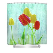 Colorful Spring Tulip Flowers Shower Curtain