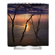 Colorful Sunset Seascape With Tree Trunks Shower Curtain