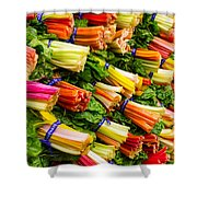 Colorful Swiss Chard Shower Curtain