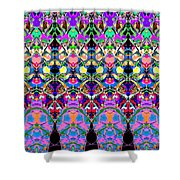 Colorful Symmetrical Abstract Shower Curtain