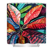 Colorful Tropical Leaves 2 Shower Curtain