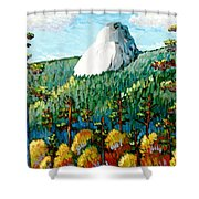 Colorful View Of Idyllwild California Shower Curtain