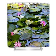 Colorful Water Lily Pond Shower Curtain